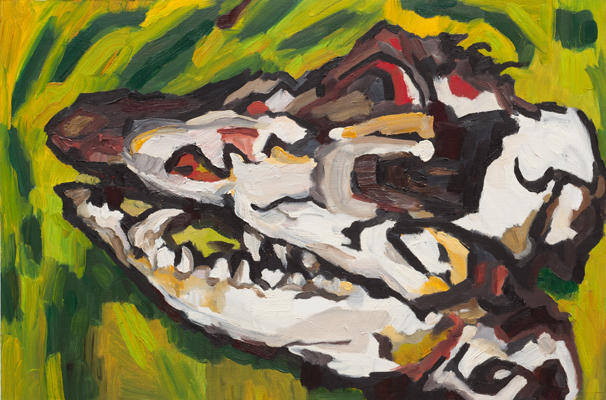 "Possum Skull 1 (2009). 16"" x 24"". Oil on panel."