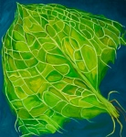 "Torn Skunk Cabbage Leaf (2007). 48"" x 44"". Oil on Canvas."